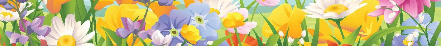 Headerblumenwiese Wechseljahre